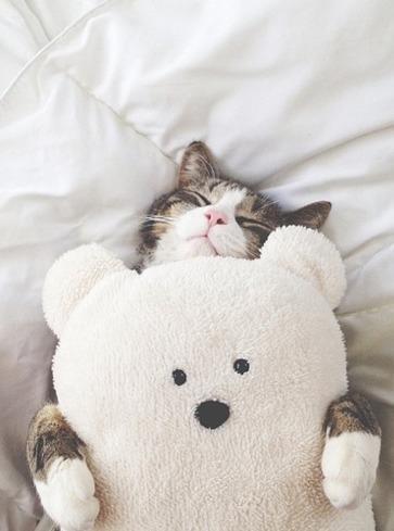 Good Night World!